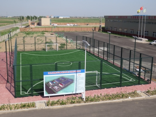 Cage football ground